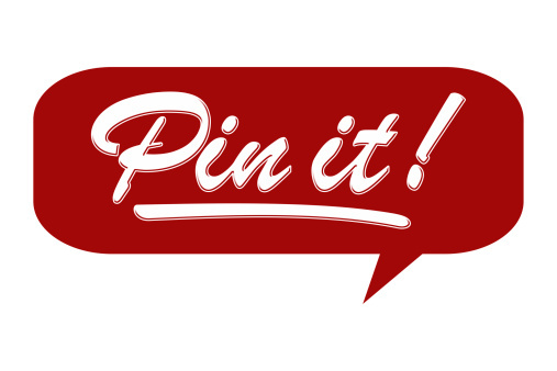 pin it logo